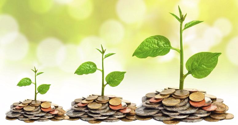 3-plants-growing-with-coins-on-the-bottom